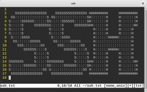 قرار دادن متن در هنگام ورود به SSH