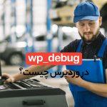 wp_debug در وردپرس چیست و چطور عیب یابی می کند؟