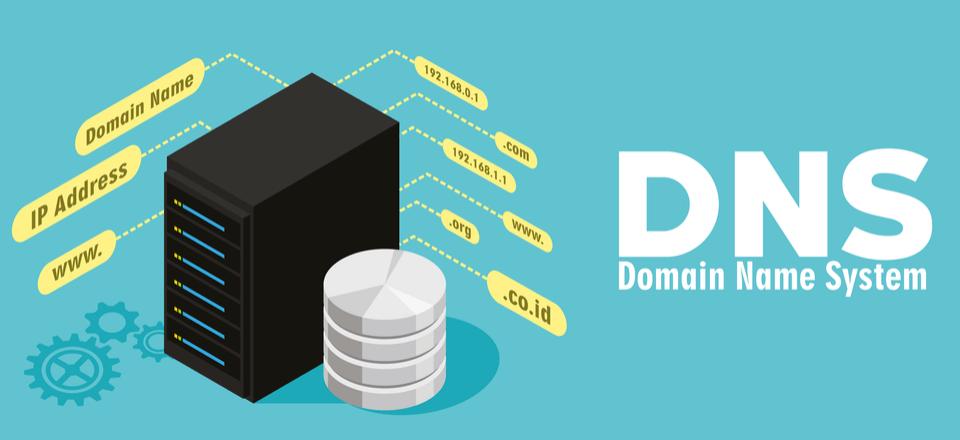 تغییر DNS در پلسک