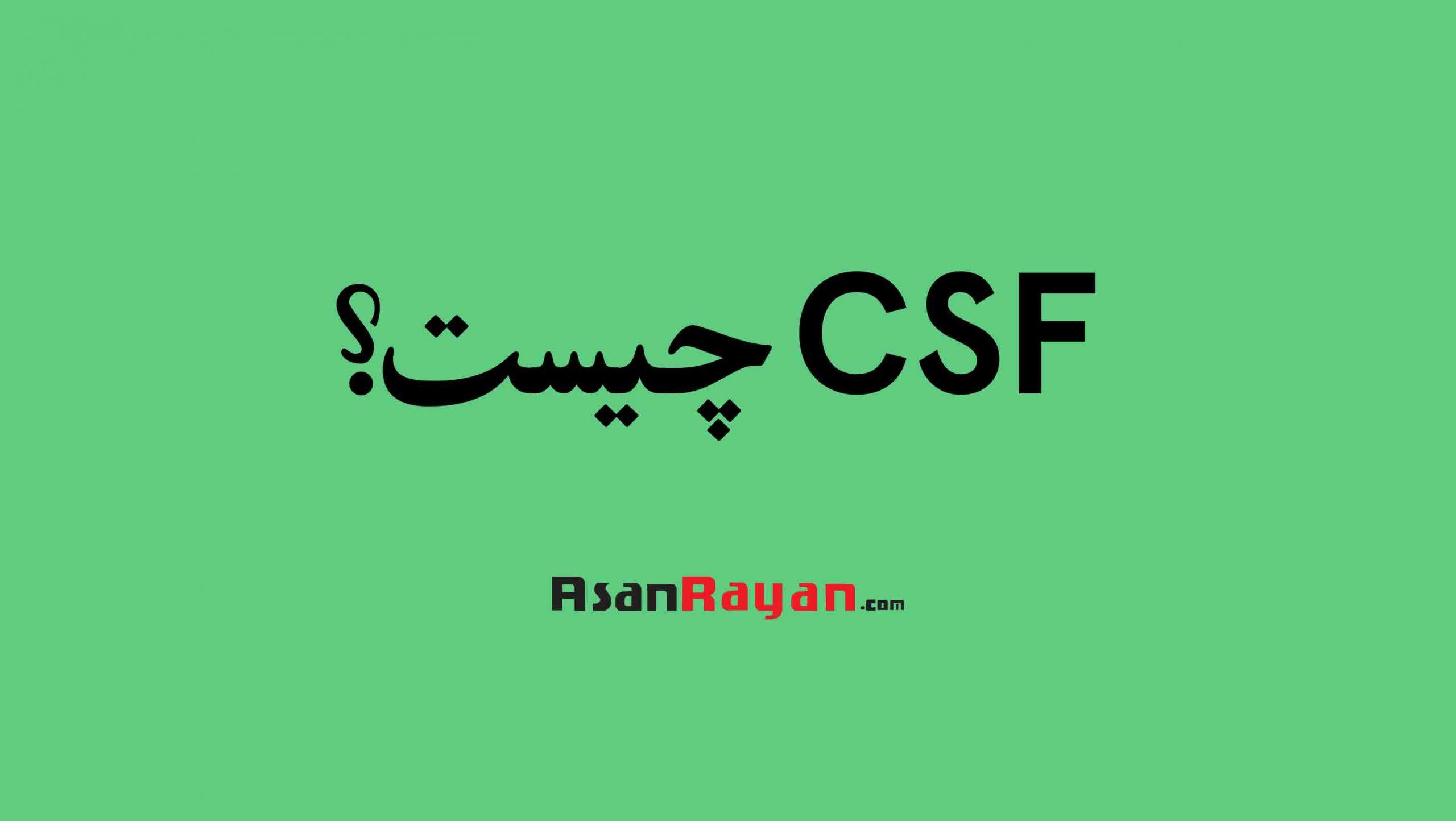 CSF چیست؟