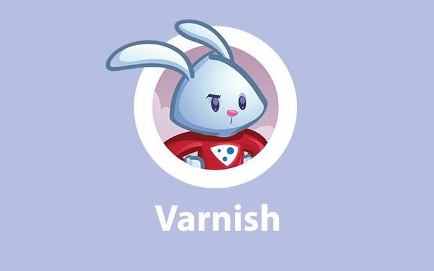 وارنیش